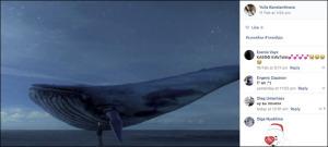 inside_whale